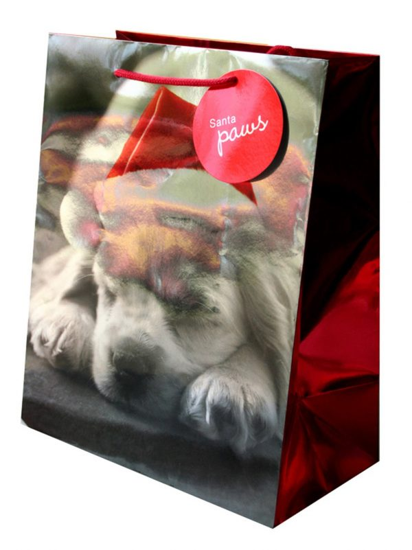 Christmas Paper Gift Bag