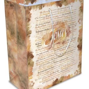 Large Luxury Paper Gift Bag