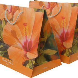 Paper Shopping Bag With Sunny Flowers