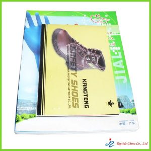 Printed Brochure and catalog