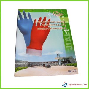 Designing and printing Catalogue