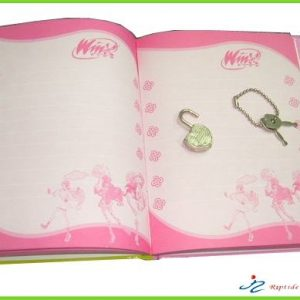 Diary book with lock