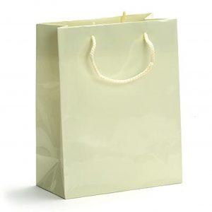 High Gloss Laminated Paper Shopping Bags-paper bag-gift bag