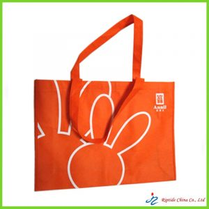long champ tote bags