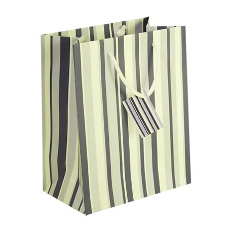 Blue and White Striped Shopping Bag