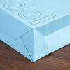 paper bag 51