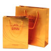paper bag 71